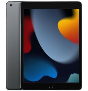 """Tablet APPLE iPad 10.2"""" 9 gen. 256GB Wi-Fi Gwiezdna szarość"""